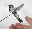 hummingbird robot