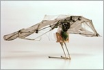 Grasshopper Microbot with Wings